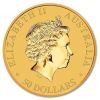 1/2 oz Gold Nuggat Coin - image 2